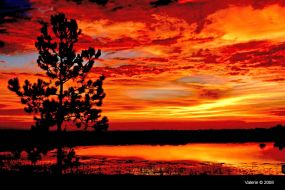 lady-with-a-brush-393361-albums-sunsets-pic7896-terrasunset-5206-web.jpg